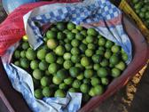 Stock Photo of el salvador basket of fresh limes san francsisco
