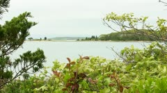 Toby's island Cape Cod Stock Footage