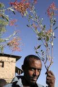 ethiopia girogis church adwa dring ceremony when - stock photo