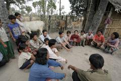 Cambodia members of cow bank tareach village Stock Photos