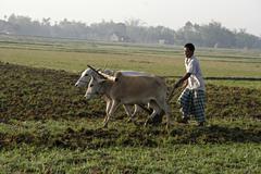 Bangladesh farid pathang of the garo tribal his Stock Photos