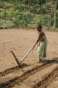 Bangladesh farmer of koch tribal minority field Stock Photos