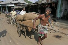 Bangladesh man male hauling heavy load market at Stock Photos
