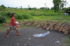 Indonesia girl herding ducks bali asia se food Stock Photos