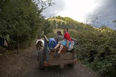 Chile mapuche indians traveling by bullock cart Stock Photos