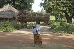 South sudan woman female carrying thatch for yei Stock Photos