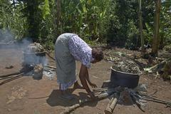 Uganda cooking matoke the steamed banana staple Stock Photos