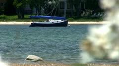 Sailboat in lagoon Cape Cod Stock Footage