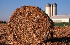 Rolled corn silos farm nr carroll ia arcadian Stock Photos
