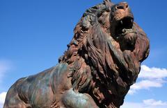Leijonien karjunta eläinten museo Tucson Pima az rakentaa Kuvituskuvat