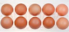 Hen's eggs in holder Stock Photos