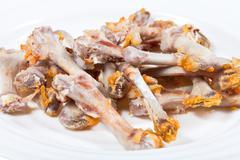 Gnawed chicken bones close up Stock Photos