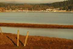 Stock Photo of washington san juan islands lopez island bay low