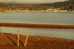 Washington san juan islands lopez island bay low Stock Photos