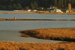 washington san juan islands lopez island bay - stock photo