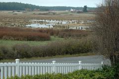 Washington san juan islands lopez island union Stock Photos