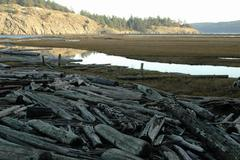 Stock Photo of washington san juan islands lopez island spencer