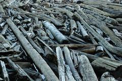 Washington san juan islands lopez island spencer Stock Photos