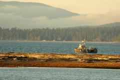 Washington san juan islands lopez island upright Stock Photos