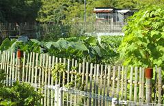 Japan honshu ishikiri mt ikoma trail garden gate Stock Photos
