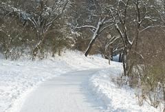 Stock Photo of snowy lane