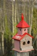design birdhouses painted avian craft carpentry - stock photo