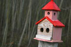 Birdhouses painted avian craft carpentry aspect Stock Photos