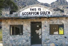 arizona phoenix south mountain park scorpion - stock photo