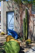 Art Arizona scottsdale vanha kaupunki kaktus julkisten Kuvituskuvat