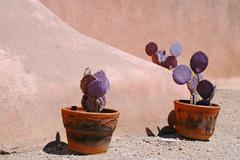 Sun arizona tucson degrazia museum mission ted Stock Photos