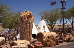 worlds largest petrified tree holbrook arizona - stock photo