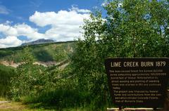 lime creek burn area mile marker 59 hwy 550 - stock photo