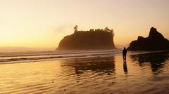 ruby beach olympic national park hiway 101 one - stock photo