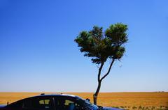 speeding blue car kansas ks sky tree motion blur - stock photo