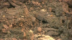 Lava Beds 04 Devils Homestead Stock Footage