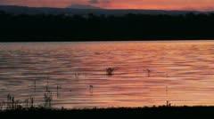 Lake Sunset 2 Stock Footage