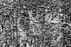 black white stucco - stock photo