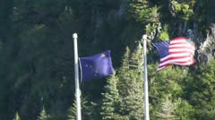 Begich, Boggs Visitor Center at Portage Glacier Stock Footage