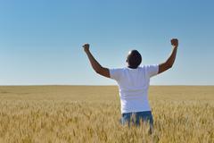 Stock Photo of man in wheat field