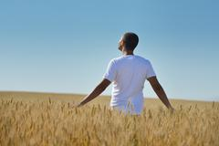 man in wheat field - stock photo