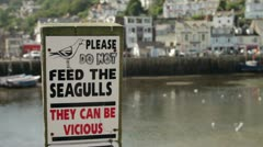 Do not feed the seagulls sign at looe, cornwall Stock Footage