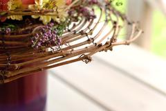fragment of floristic composition - stock photo