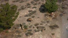 Hot Springs 17 Deers Hot Creek Geothermal Area Stock Footage