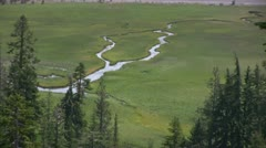 Lassen 53 Kings Creek Meadows Zoom Out - stock footage