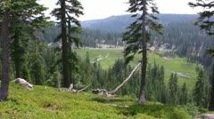 Lassen 54 Kings Creek Meadows - stock footage
