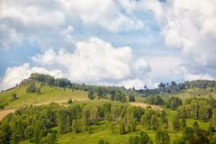 altai meadows - stock photo