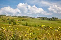Stock Photo of altai meadows