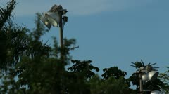 Police helicopter approaches from behind trees Stock Footage