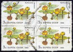 stamps , macro - stock photo
