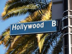 Hollywood blvd palms Stock Photos